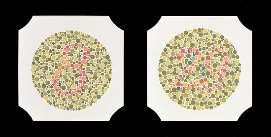 Farbtafeln nach Ishihara, Buch mit 24 Stck., gebunden