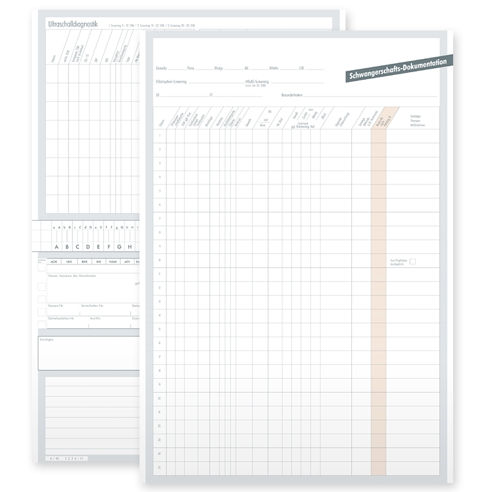 Karteikarten ALPHAsafe DINA5 (250 Stck.), Typ Schwangerschaftsdokumentation