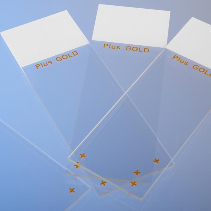 Objektträger SuperFrost Plus Gold, (72 Stck.)