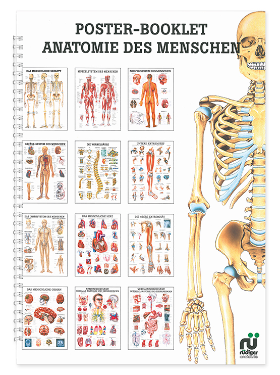 Mini-Poster Booklet: Anatomie