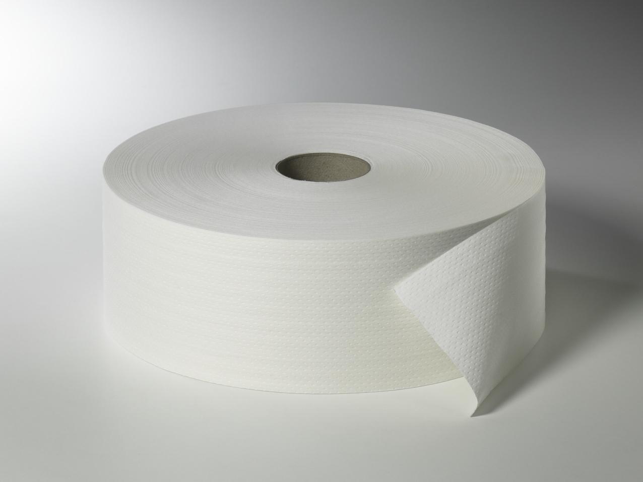 Fripa - Toilettenpapier maxi, 2-lagig, 420 m, nicht perforiert (6 Rl.)