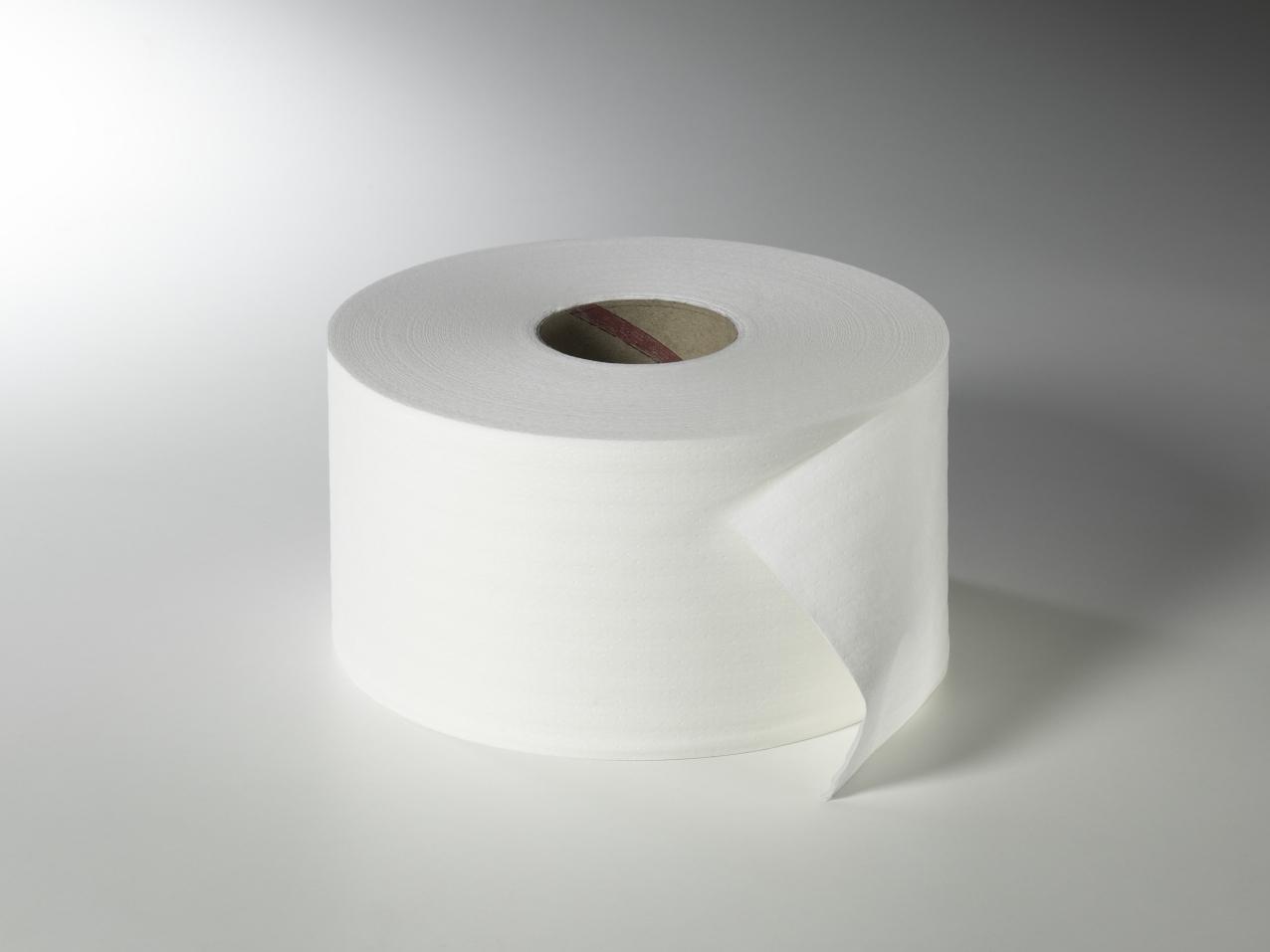 Fripa - Toilettenpapier maxi, 2-lagig, 200 m, nicht perforiert (12 Rl.)