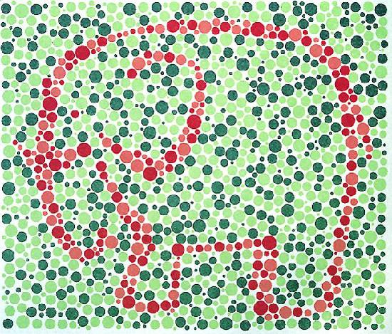 Farbtesttafeln für Kinder, nach, Matsubara, inkl. 6 Matching-Tafeln