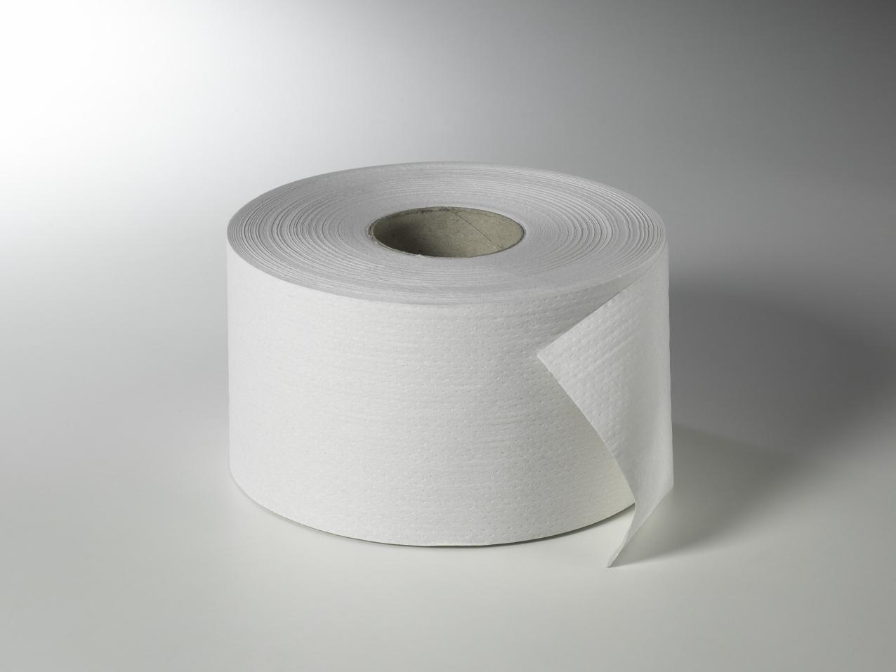 Fripa - Toilettenpapier maxi, 2-lagig, 180 m, nicht perforiert (12 Rl.)