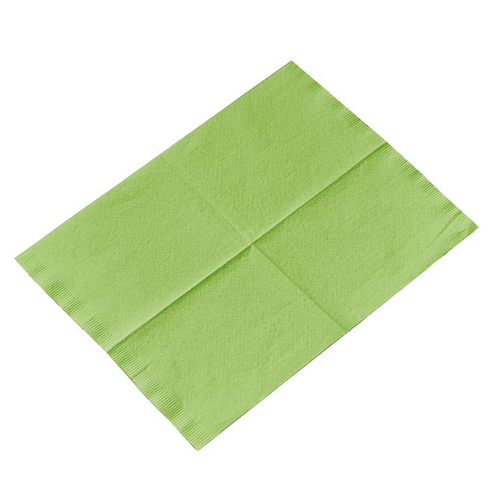 Kopfstützenschoner Tissue/PE, 25 x 33 cm, fresh grün (500 Stck.)